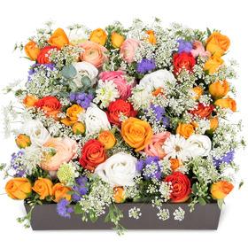 꽃상자 p520
